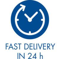 consegna-24-ore-ENG